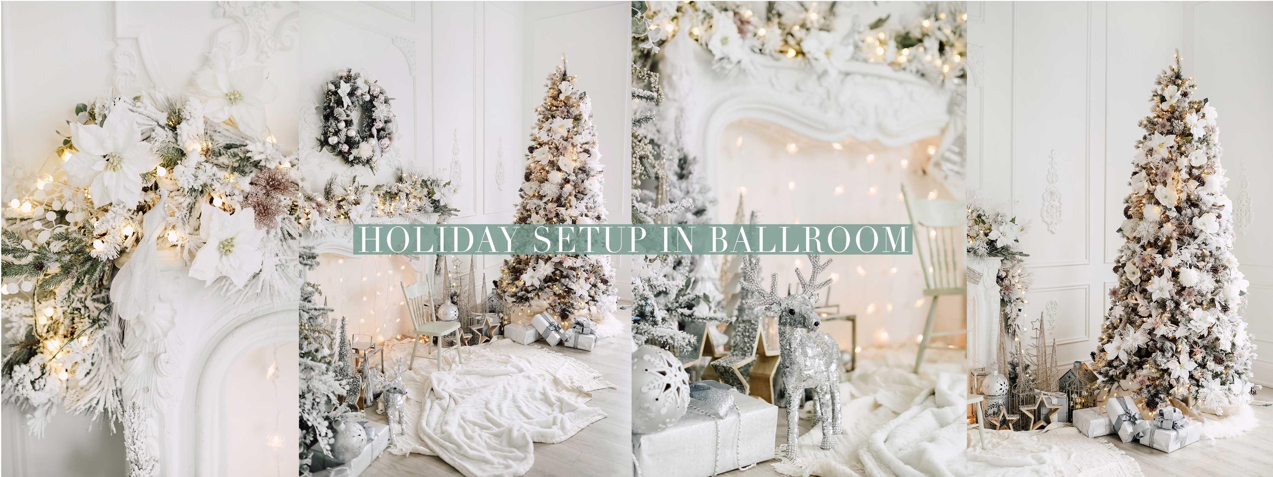 Holiday Photography Setup
